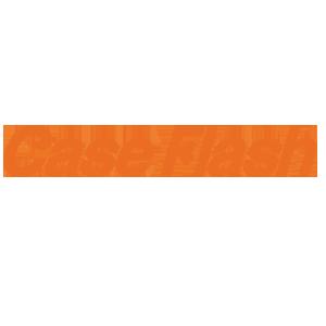caseflash-300x300